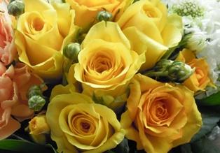 黄色のバラ クリスタルスクエアの花器アレンジ